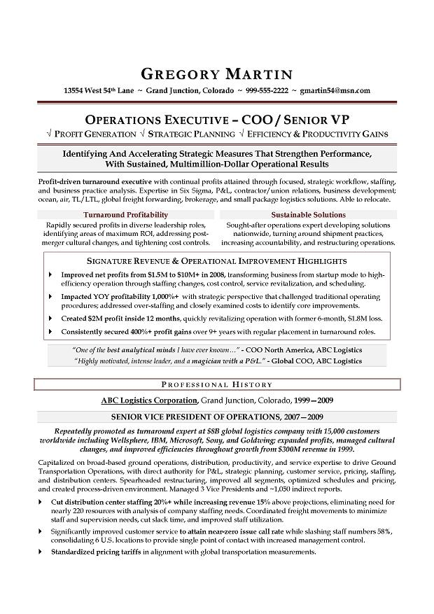 Sales Executive Resume Example. Executive Resume Builder Resume