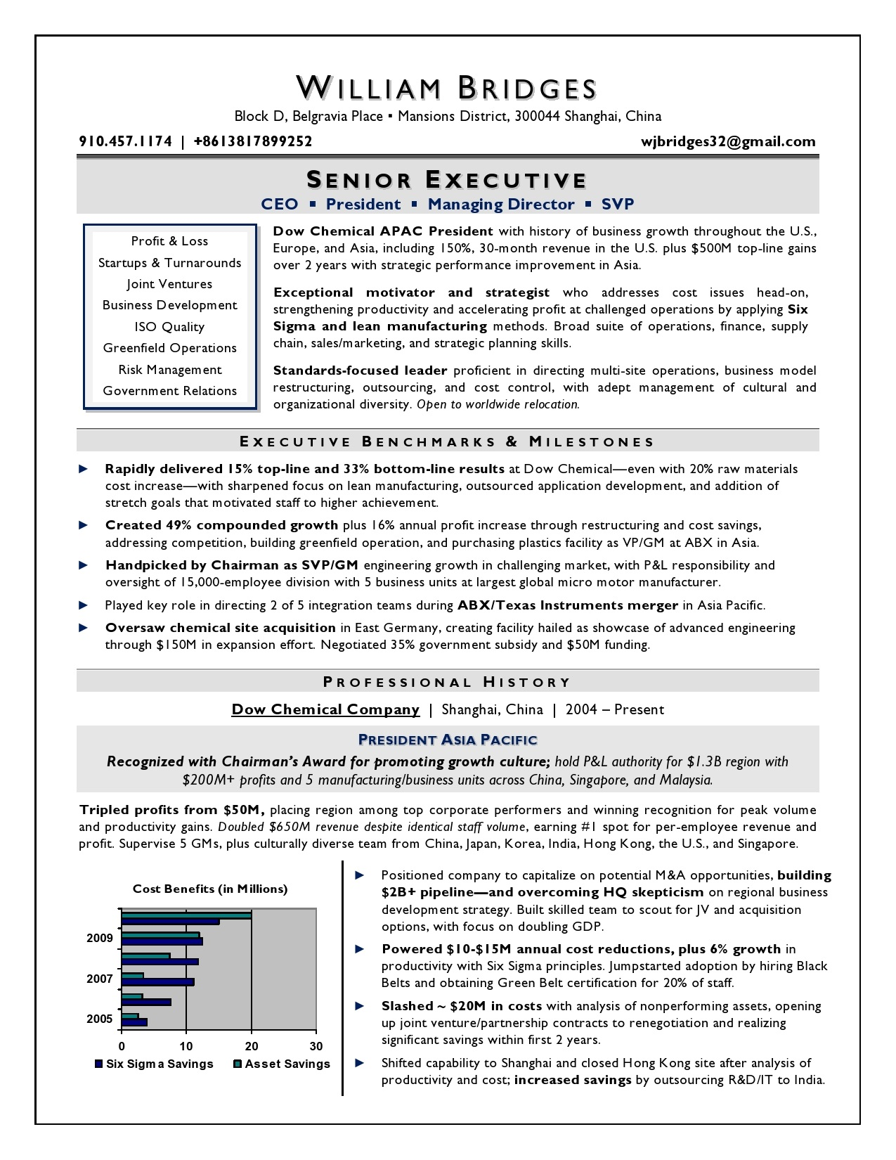 ceo sample resume  award winning resume writer serving