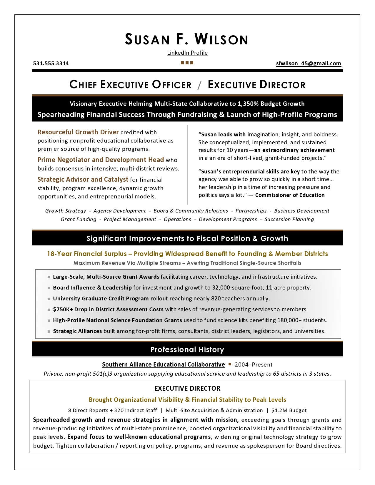 Nonprofit Ceo Sample Resume Executive Resume Writer