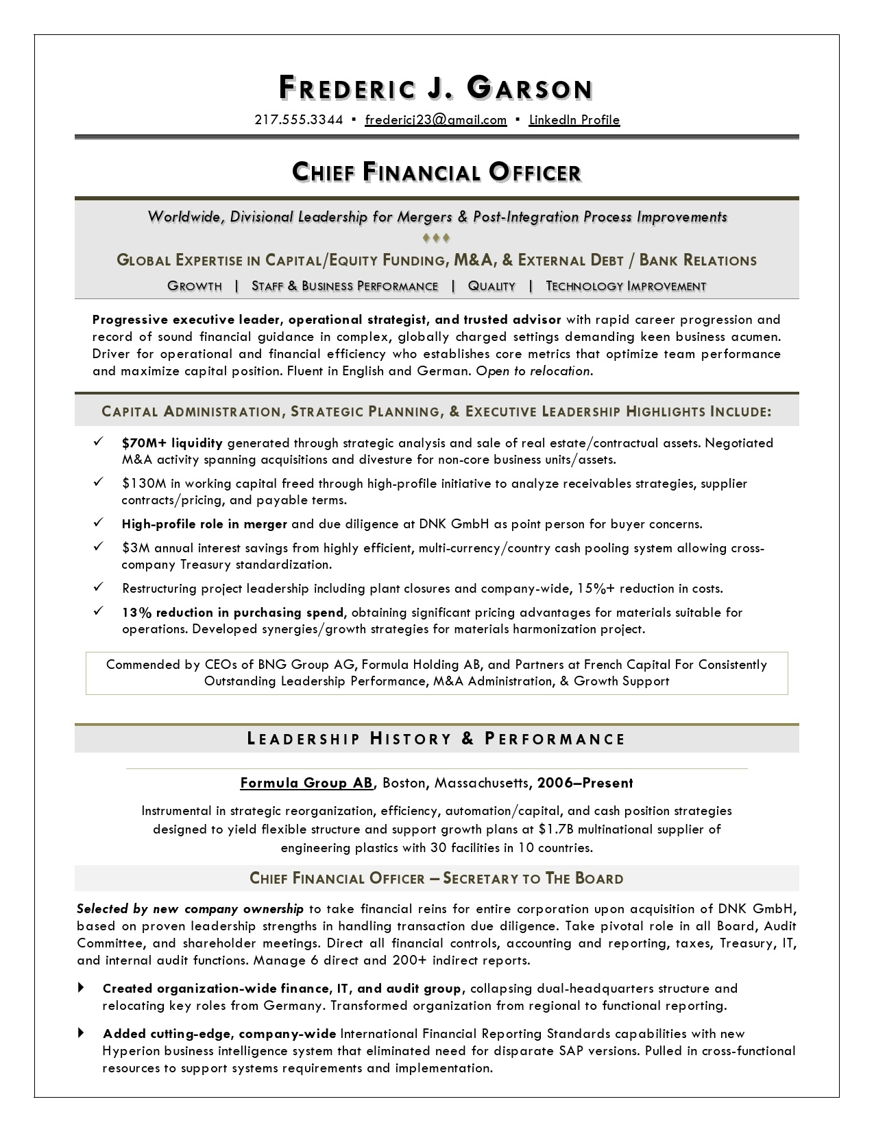 Resume Writer For Cfos Executive Resume Service For
