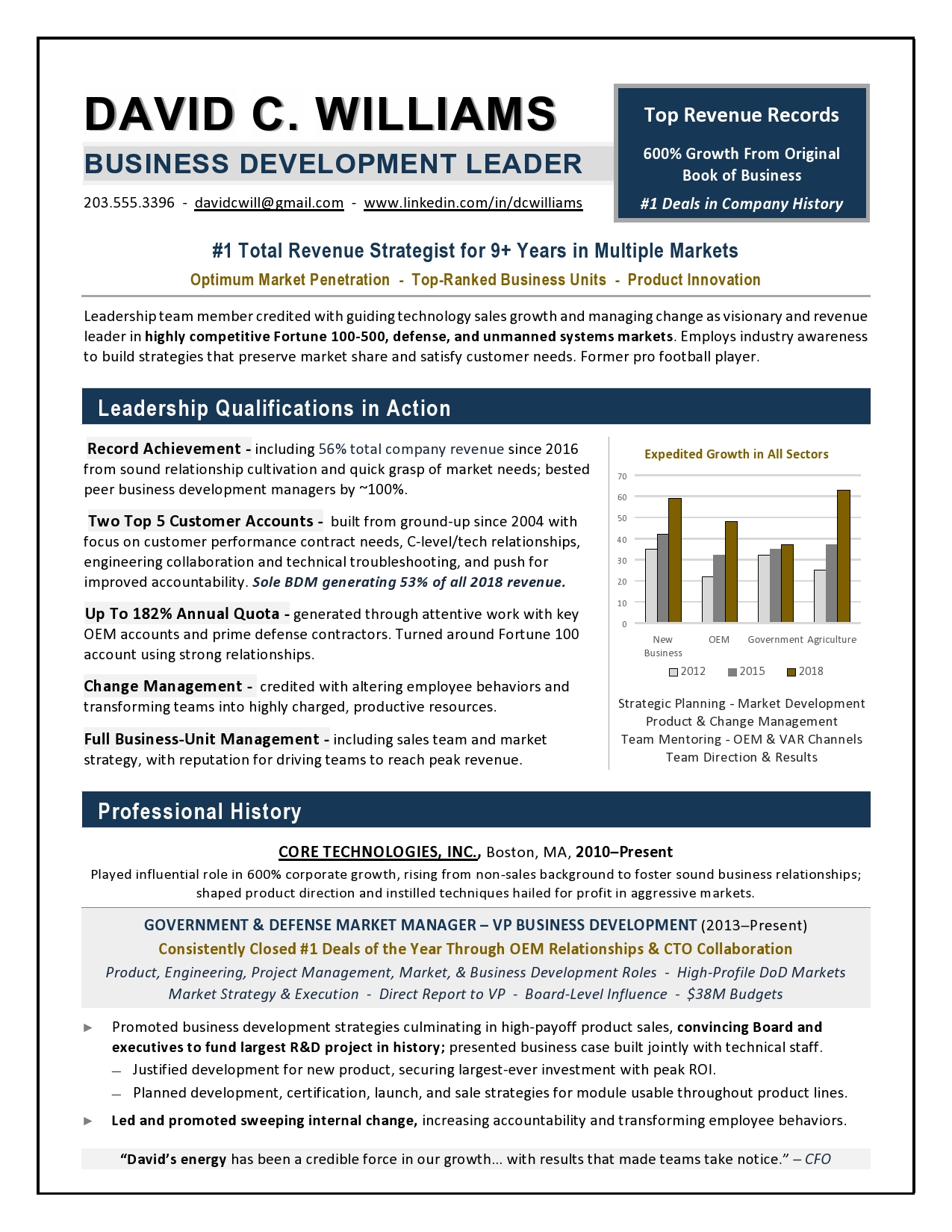 vp business development resume example